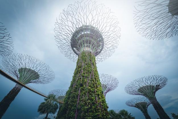 Supertree gaj na niebieskim niebie w ogródzie zatoką przy dniem, singapur.