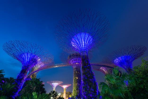 Supertree ogród przy nocą, ogród zatoką, singapur