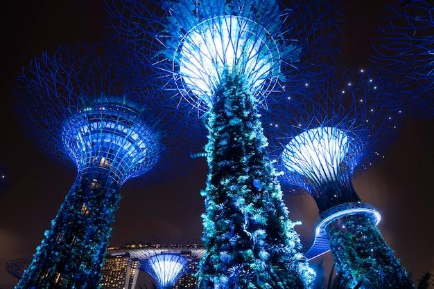 Supertree ogród przy nocą w ogródzie zatoką, singapur