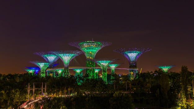 Supertrees oświetlone na pokaz świetlny w ogrodach nad zatoką w porze nocnej, punkt orientacyjny w singapurze