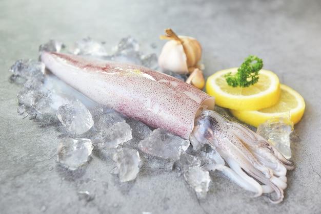 Surowa kałamarnica na lodzie z sałatkowymi pikantność cytryny czosnkiem na bielu talerzu. świeże ośmiornice lub mątwy kalmary do gotowanych potraw w restauracji lub na rynku owoców morza
