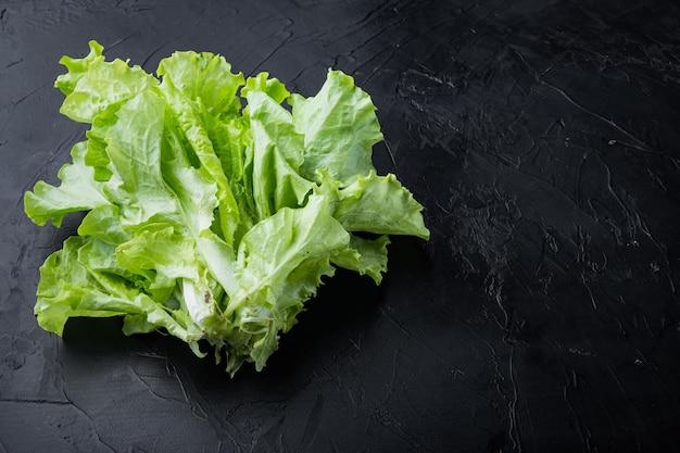 Surowa organiczna zielona, dębowa sałata, na czarnym tle z miejscem na tekst
