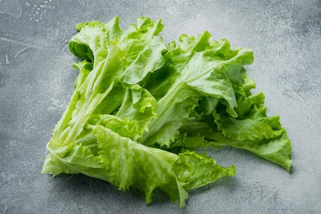 Surowa organiczna zielona, dębowa sałata, na szarym tle