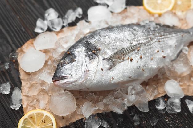 Surowa ryba dorada lub dorada na lodzie z plasterkami cytryny i rozmarynem na czarnym drewnianym tle, leżak płaski, widok z góry