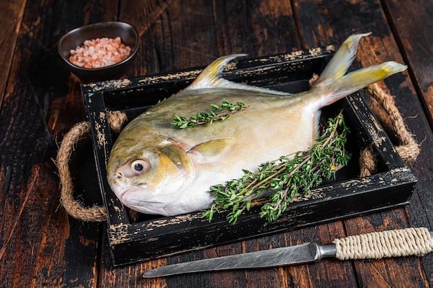 Surowa ryba maślana lub pompano z ziołami na drewnianej tacy