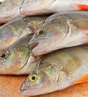 Surowa ryba na tnącej desce odizolowywającej