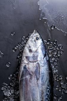Surowa świeża ryba tuńczyka