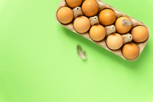 Surowe brązowe jaja kurze w tekturowym pudełku na zielonym tle, miejsce na tekst.