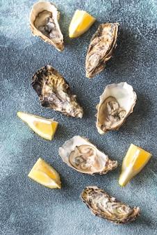 Surowe ostrygi na szarym tle