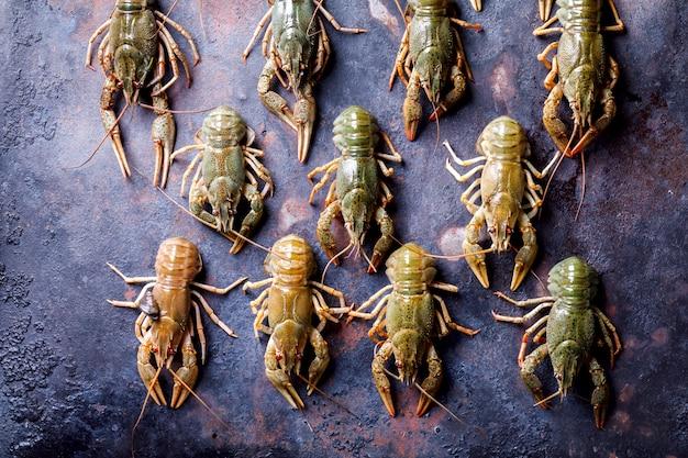 Surowe raki, homar dziecięcy.
