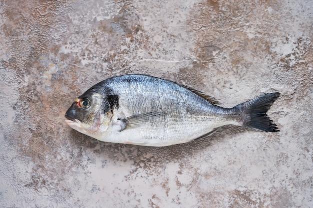 Surowe ryby dorado na broun betonowym tle. świeża organiczna dorada lub dorada. widok z góry, miejsce na kopię