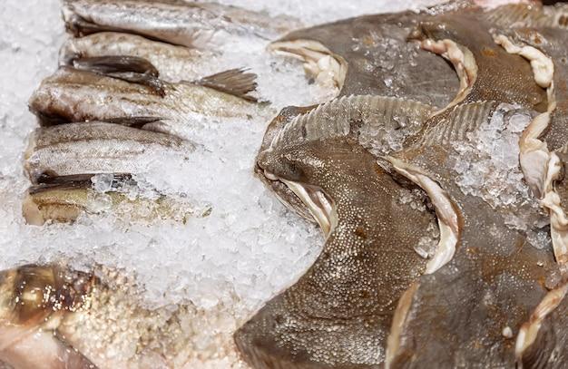 Surowe ryby morskie mintaj i flądra wśród lodu w lodówce w supermarkecie lub na targu rybnym