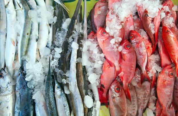 Surowe ryby na ladzie rynku