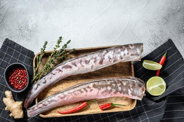 Surowe ryby węgorza morskiego ze składnikami do gotowania. szare tło