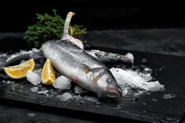 Surowe, świeże organiczne dorado lub dorada morska na kostkach lodu na czarnej łupkowej, kamiennej lub betonowej powierzchni