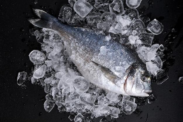 Surowe, świeże, organiczne dorado lub dorada morska na kostkach lodu na czarnym łupku