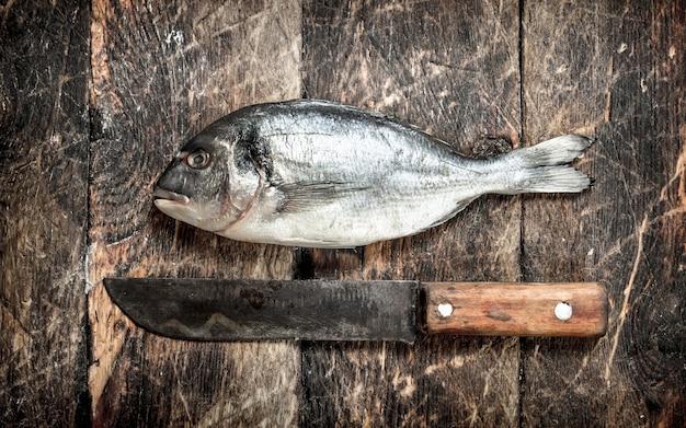 Surowe, świeże ryby.