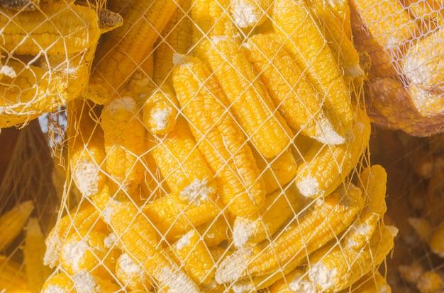 Surowe ziarno kukurydzy w worku