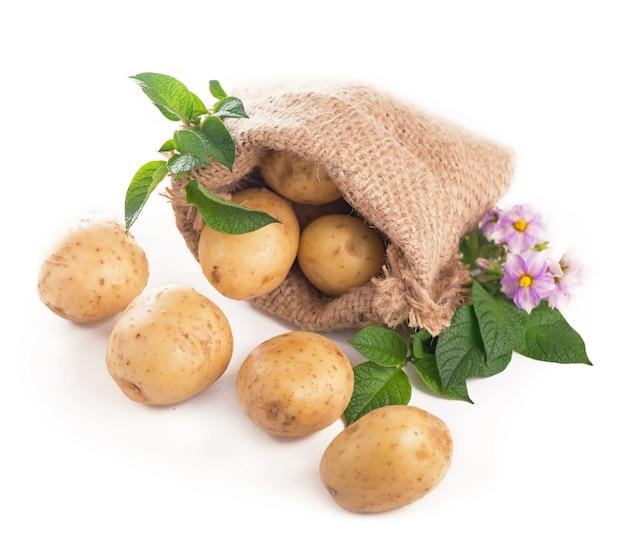 Surowe ziemniaki w worku jutowym na białym tle na białej powierzchni