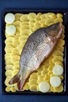 Surowy karp, cała ryba z pokrojonymi ziemniakami na tacy na niebiesko. tradycyjny europejski