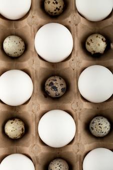 Surowy kurczak i jaja przepiórcze w opakowaniu kartonowym.