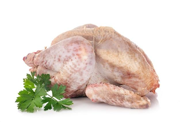 Surowy kurczak przed białym tle