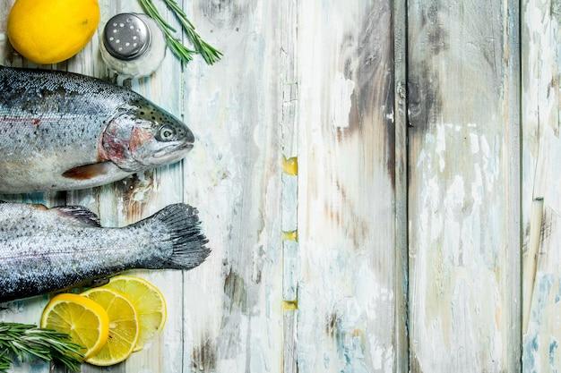 Surowy łosoś rybny z rozmarynem i cytryną.