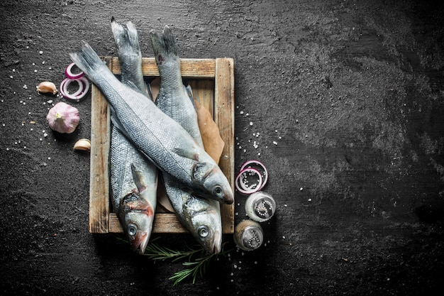 Surowy okoń morski na tacy z przyprawami, czosnkiem i posiekaną cebulą.