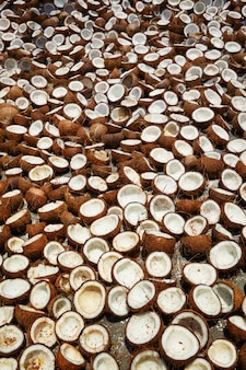 Suszenie kokosów, kerala, południowe indie