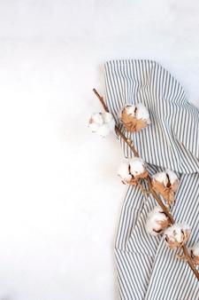 Suszona gałąź bawełny na zmiętej serwetce w paski