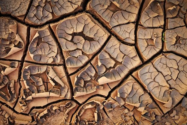 Suszona popękana ziemia gleby tekstury ziemi.