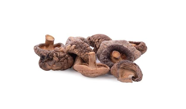 Suszone grzyby shiitake na białym tle