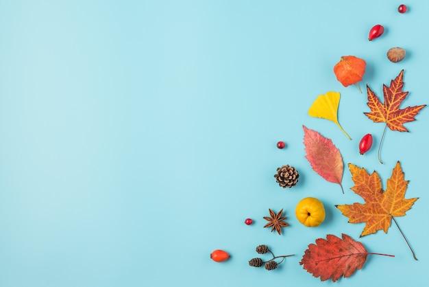 Suszone jesienne liście na białym tle na niebiesko