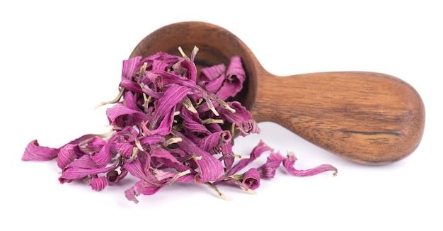 Suszone kwiaty echinacea w drewnianą łyżką, na białym tle. płatki echinacea purpurea. zioła medyczne.