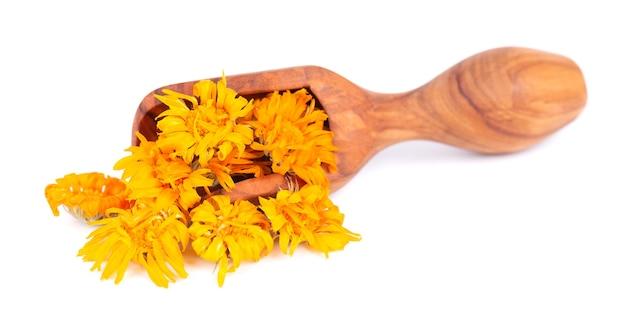Suszone kwiaty nagietka w drewnianą gałką, na białym tle. płatki nagietka lekarskiego. zioła medyczne.