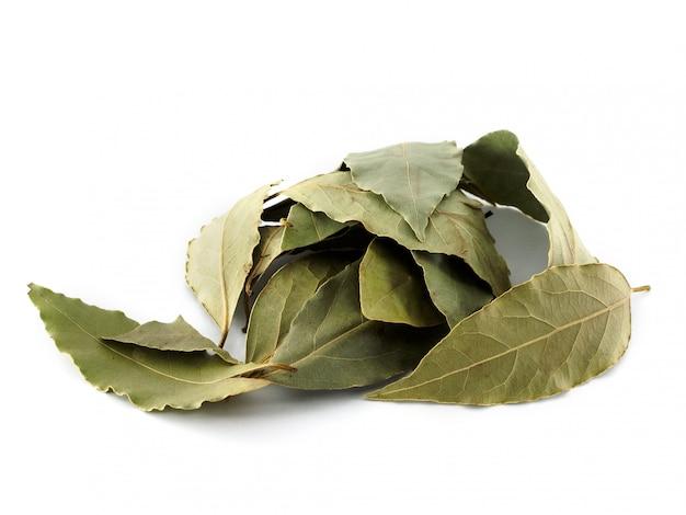 Suszone liście laurowe na białym tle