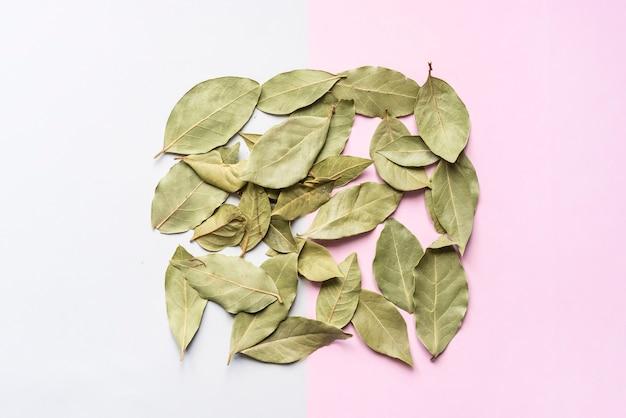 Suszone liście zielonej herbaty na powierzchni miękkiego koloru tła z kwadratową ramą koncepcji f