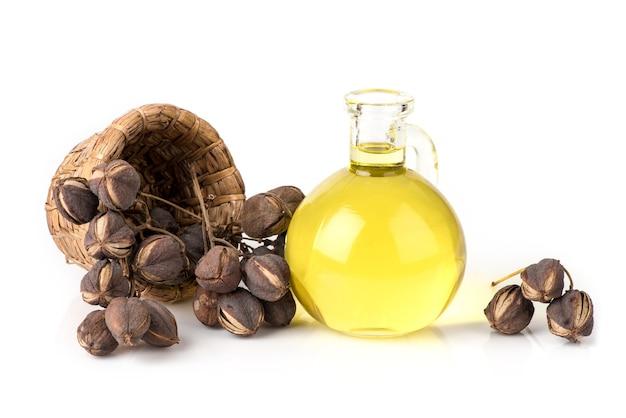 Suszone sapium indicum willd owoce i olej na białym tle.