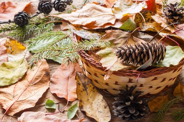 Suszy liście w koszu na drewnianym tle