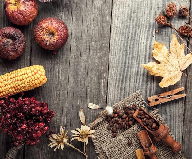 Suszy rośliny i owocowego wciąż życie na drewnianym stole, widok z wierzchu wysuszonych jagod kawy na rocznik desce