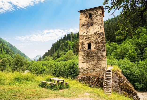 Svan wierza w svaneti wsi, gruzja