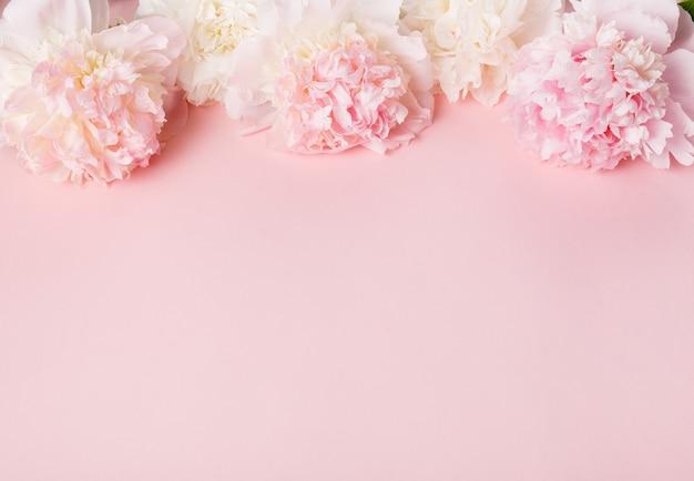 Świąteczna kompozycja kwiatowa różowa piwonia na różowym tle. widok z góry, układ płaski. skopiuj miejsce.