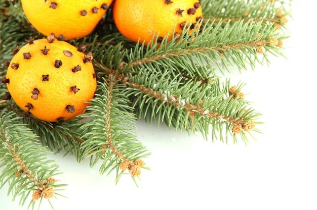 Świąteczna kompozycja z pomarańczami i jodłą, na białym tle