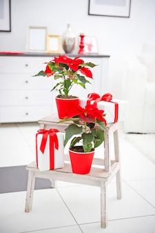 Świąteczna poinsecja i ozdoby na ozdobnej drabince z dekoracjami świątecznymi