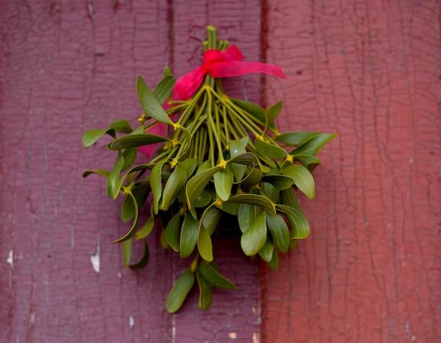 Świąteczna zielona jemioła zawieszona na starych pękniętych drzwiach.