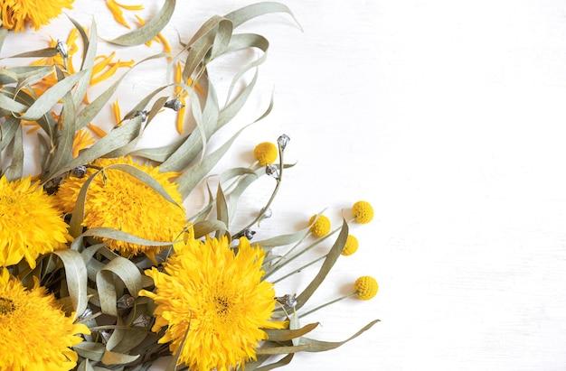 Świąteczne białe tło z słonecznikami i kwiatami craspedia, miejsce.