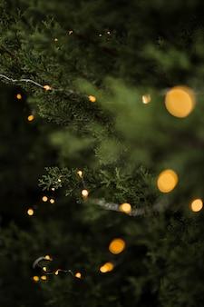 Świąteczne dekoracje z pięknym drzewem i światłami