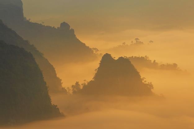 Światło słoneczne i chmury na porannej mgle w phu lang ka, phayao, tajlandia