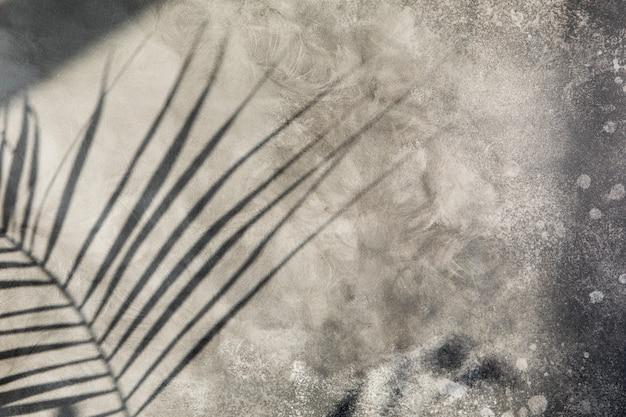 Światło słoneczne pada na szarą betonową ścianę, cień liścia palmy. tło lato