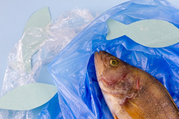 Światowy dzień oceanów. martwe ryby w plastikowej torbie, koncepcja ochrony oceanów.